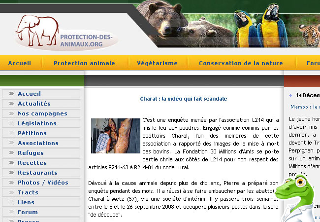 Protection des animaux.org